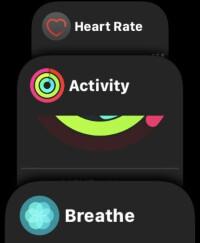 Apple-Watch-Series-4-Review013-UI