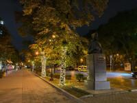 iPhone-light-trees.jpg