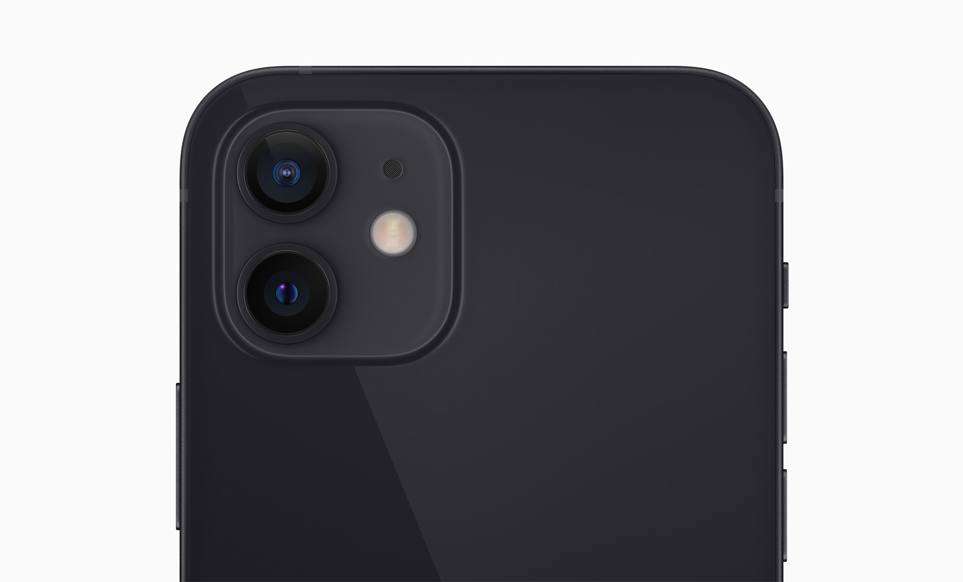 OnePlus 8T vs iPhone 12: expectations, price, specs