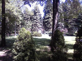 Outdoor Images - LG Vu Review