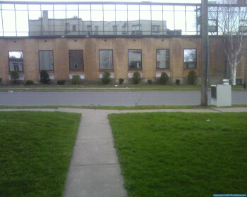 Samsung T809 Review