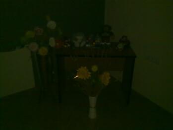Darkness - Indoor photos taken with flash set to auto - Nokia 5730 XpressMusic Review