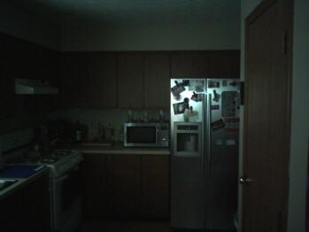 Medium light - Indoor samples with flash - Palm Pixi Review