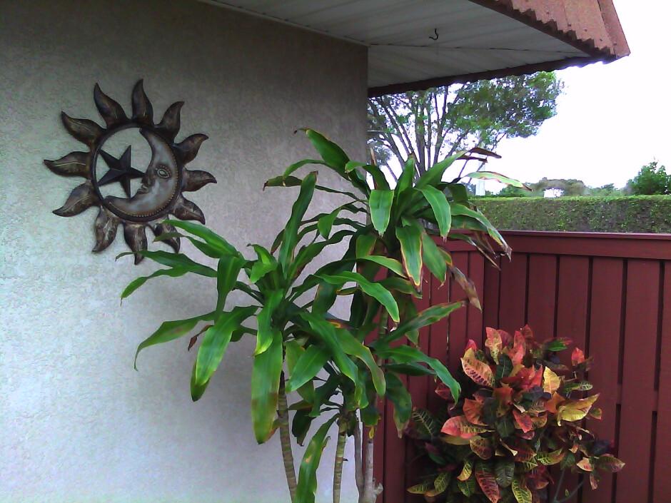 Outdoor photos shot with the Palm Pixi Plus - Palm Pixi Plus Review