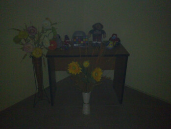 Darkness - Indoor pictures with flash - Sony Ericsson Vivaz Preview