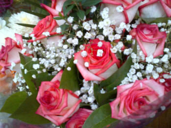 Sample images taken with RIM BlackBerry Bold 9900 - RIM BlackBerry Bold 9900 Review